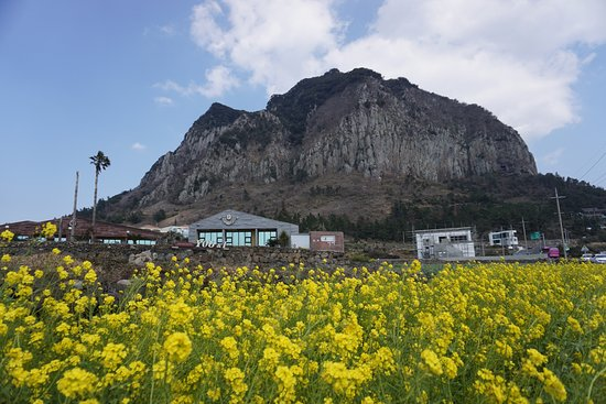 کوه سانبانگ سان و ساحل یونگ موری