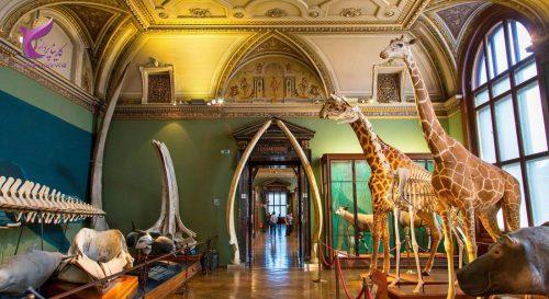 موزه تاریخ طبیعی اتریش
