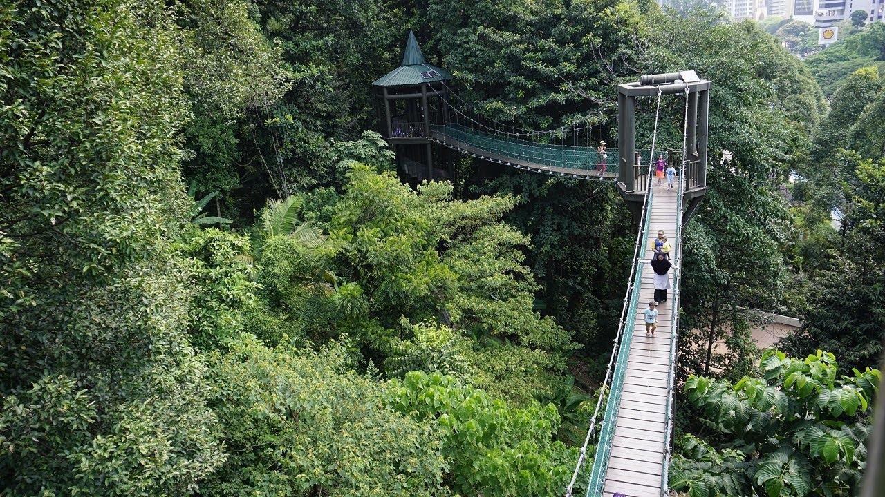 برای آرامش به مناطق سرسبز کوالالامپور بروید