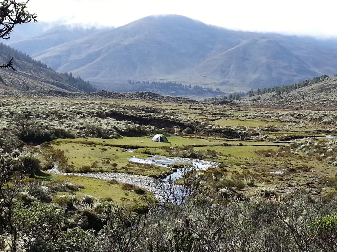 پارک ملی سیرا نوادا در ونزوئلا