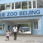 باغ وحش آبی پکن