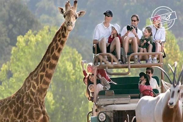 جاذبه های گردشگری آفریقای جنوبی