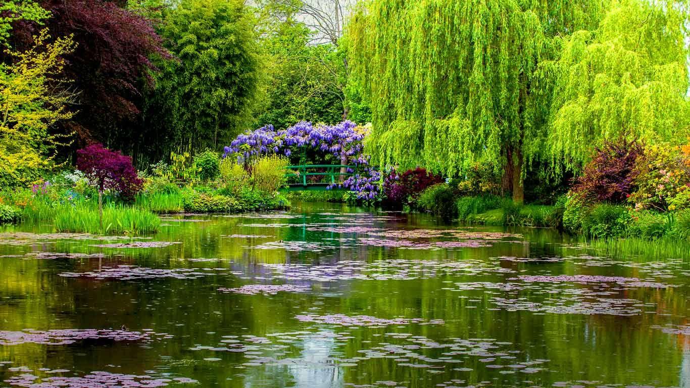 تصویر زیبای باغ موند