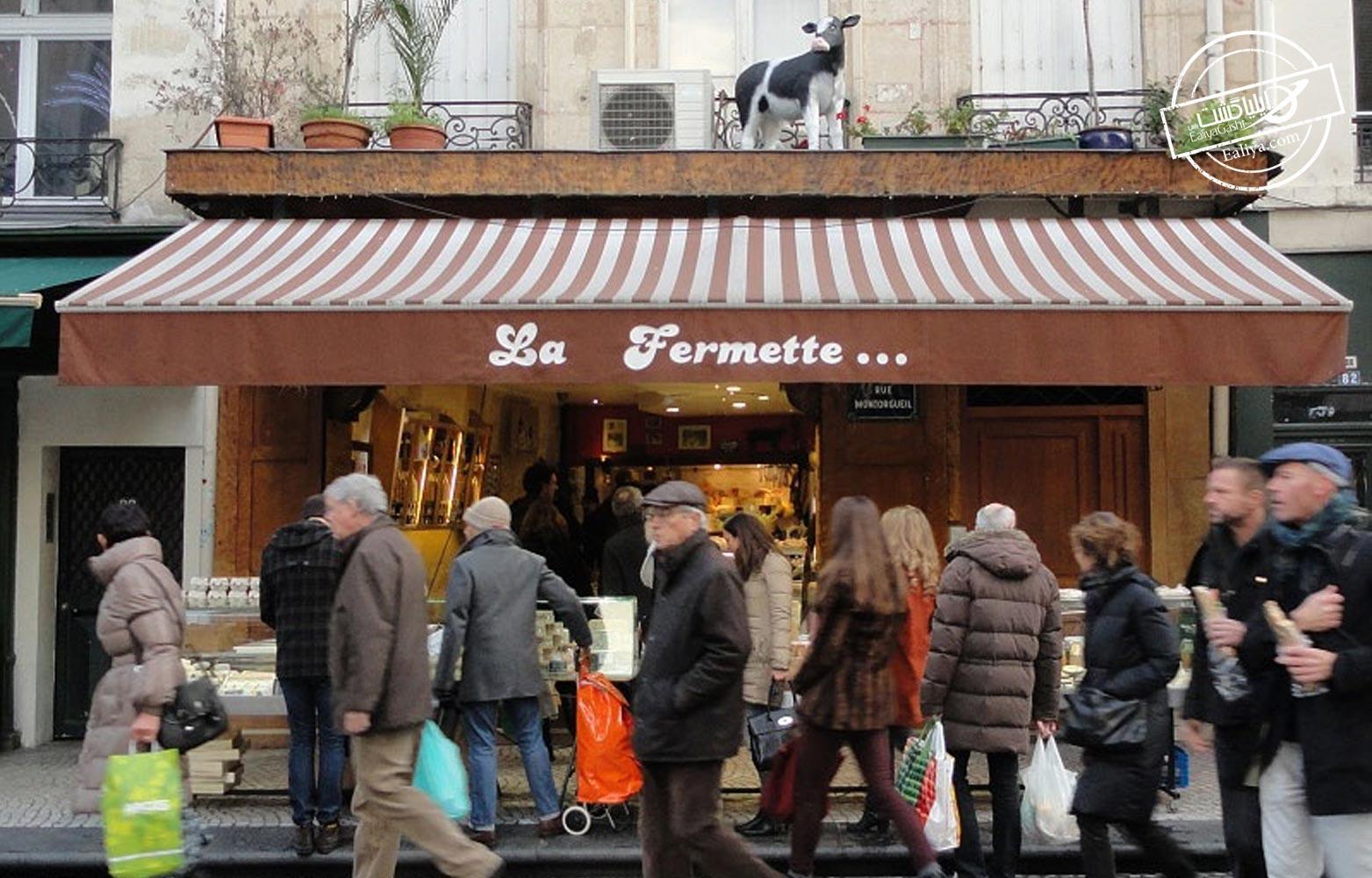 پنیر معروف پاریس
