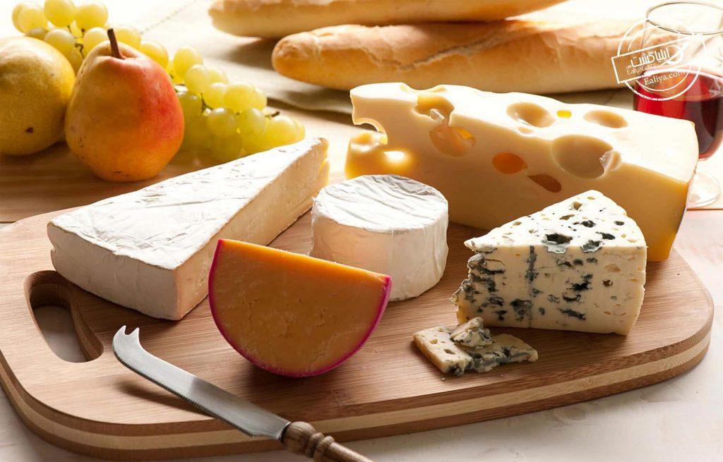 پنیر های فرانسه