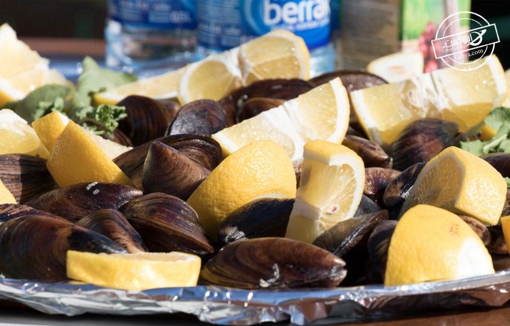 صدف شکم پر کوش آداسی