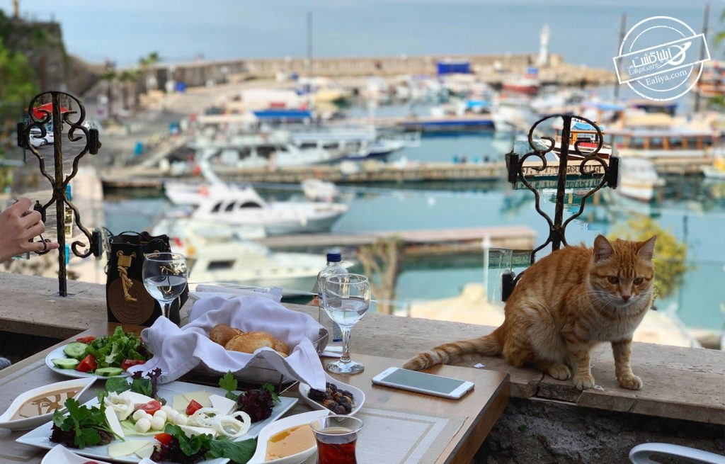 آشنایی با خدمات رستوران های آنتالیا
