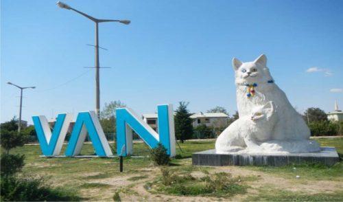 خانه گربه های وان